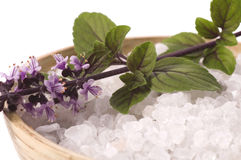 Bath salt and fresh basil Stock Image