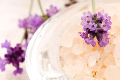 Bath Salt With Fresh Lavender Flowers Stock Image