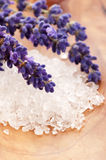 Bath Salt With Fresh Lavender Flowers Royalty Free Stock Photos
