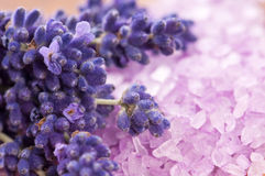 Bath Salt With Fresh Lavender Flowers Royalty Free Stock Images