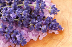 Bath Salt With Fresh Lavender Flowers Stock Photography