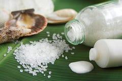 Bath salt and lotion Stock Photos