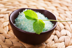 Bath salt and  mint Stock Images