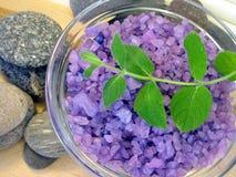 Bath salt and mint Royalty Free Stock Photo