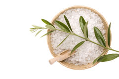 Bath salt and olive branch Royalty Free Stock Images
