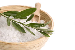 Bath salt and olive branch Royalty Free Stock Image