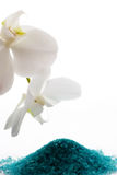 Bath salt and orchid Stock Photography