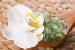 Bath salt and  orchids Royalty Free Stock Image