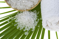 Bath salt and palm leaf Stock Image