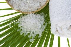 Bath salt and palm leaf Stock Image