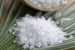 Bath salt and palm leaf Royalty Free Stock Images