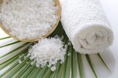 Bath salt and palm leaf Stock Photos