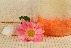 Bath salt, shell and a flower Stock Photos