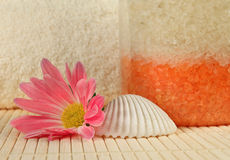 Bath salt, shell and a flower Royalty Free Stock Photo
