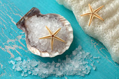 Bath salt in a shell and starfishes Royalty Free Stock Photos
