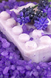 Bath salt and soap Stock Images
