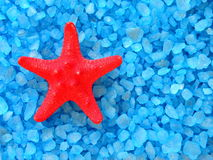 Bath salt and starfish Stock Image