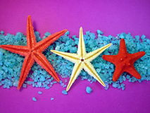 Bath salt and starfishes Royalty Free Stock Image