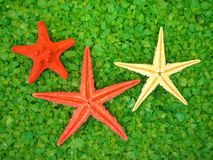 Bath salt and starfishes Royalty Free Stock Images