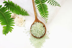 Bath Salts. A wooden spoon filled with green bath salts. Shallow DOF with selective focus on salt. Room for text Royalty Free Stock Photography