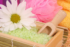 Bath Salts. Green Bath Salts with Flower and Bath Sponge Royalty Free Stock Images
