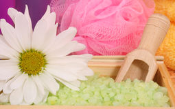 Bath Salts. Green Tea Bath Salts With Flower and Pink Sponge Royalty Free Stock Photography
