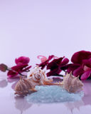 Bath salts - beauty concept Royalty Free Stock Images