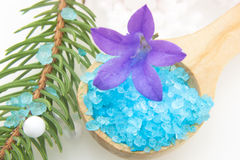 Bath Salts And Fir Tree Branch Royalty Free Stock Photo