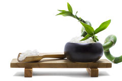Bath salts with lucky bamboo. Zen image created with bath salts and a lucky bamboo Stock Photo