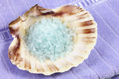 Bath salts in a seashell Stock Images