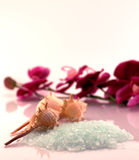 Bath salts - Spa concept Royalty Free Stock Photography
