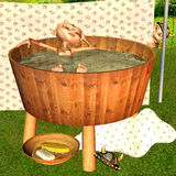 Bath scene. 3d rendering a girl, which takes a bath as illustration Royalty Free Stock Image