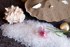 Bath sea salt on black granite flooring tiles Stock Images