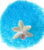 bath sea salt with white orchid Royalty Free Stock Photography