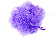 Bath sponge Stock Images