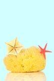 Bath sponge Royalty Free Stock Images