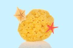 Bath sponge Royalty Free Stock Photo