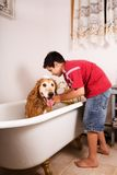 Bath Time. Preteen boy giving his golden retriever a bubble bath in the family tub Royalty Free Stock Image