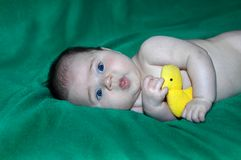 Bath time and duckie Stock Image