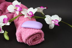 Bath ting. Bath in pink and violet Stock Image
