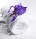 Bath towel with flower Stock Photography