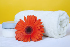Bath towel and gerbera Royalty Free Stock Photography