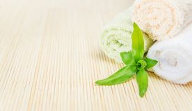 Bath towels and lucky bamboo. Spa concept: three bath towels twisted into a rolls and green sprout of lucky bamboo with fresh leaves on a beige bamboo mat, with Stock Photography