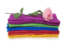 Bath Towels and Rose. Collection of colorful bath towels for everyday use - Path included Stock Image