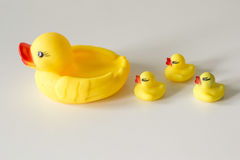 Bath toy row of yellow ducks on white background Royalty Free Stock Photos