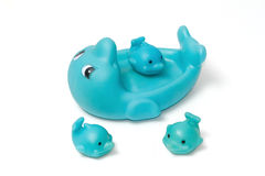 Bath toy, Rubber blue dolphinn family Stock Photography