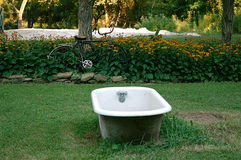 Bath Tub. Bath Time on the Farm A bike is parked amonst the black eyed susans while leaning against a tree in the background. An old empty iron bathtub sits in royalty free stock photography