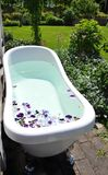 Bath tub filled with flowers stock image