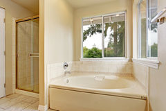 Bath tub with windows. Bright bathroom interior with two windows, bath tub and glass door shower royalty free stock images
