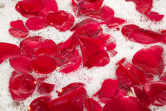 Bath water with rose petals Stock Photo